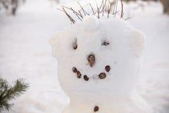 Kaltes Gesicht des Schneemannes hat Karottennase, Rohr und Knopfaugen Roter Schalstrohhut Lizenzfreie Stockfotos