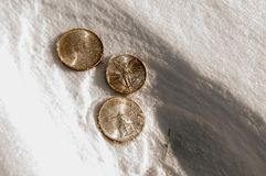 Kaltes Münzgeld - Silbermünzen im Schnee lizenzfreies stockfoto