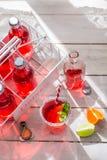 Kaltes Sommergetränk in der Flasche mit tadellosem Blatt Stockbilder