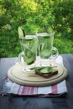 Kaltes Trinkwasser in einem Glas mit Gurke und Dill auf einem woode Lizenzfreies Stockbild