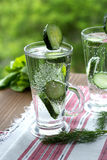 Kaltes Trinkwasser mit Gurke und Dill in einem Glas Lizenzfreies Stockfoto