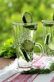 Kaltes Trinkwasser mit Gurke und Dill in einem Glas Stockfoto