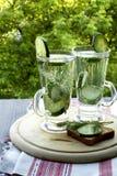 Kaltes Trinkwasser mit Gurke und Dill in einem Glas Lizenzfreie Stockbilder