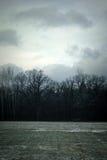 Kaltes Winter-Feld Stockbild