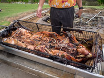 Kalua style pig is a staple of the luau Stock Images