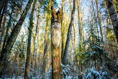 Kaluga-Region, Russland - November 2017: Slawische heidnische Idole auf dem Waldtempel lizenzfreies stockbild