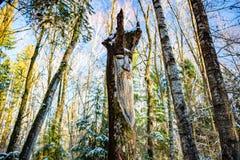 Kaluga-Region, Russland - November 2017: Slawische heidnische Idole auf dem Waldtempel stockfoto