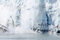 Kalva av Marguerite Glacier i Alaska #4 Fotografering för Bildbyråer