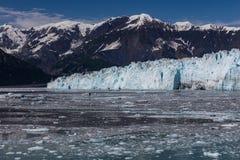 kalva glaciär Royaltyfri Bild