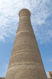 Kalyan minaret in Bukhara Royalty Free Stock Images
