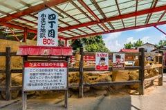 Kamado Jigokuor cooking pot hell in Beppu, Oita, Japan. Stock Image