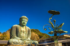 Kamakura Buddha, japan. Stock Photo