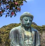Kamakura Daibutsu 1 Immagine Stock Libera da Diritti