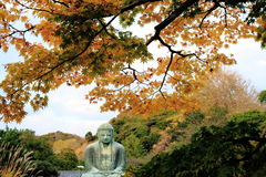 Kamakura Daibutsu in Autumn Royalty Free Stock Images