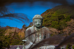 Kamakura Daibutsu in Winter Stock Photo