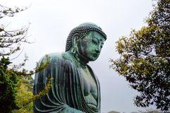 Kamakura grand Bouddha par des arbres Photo libre de droits