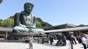 Kamakura Great Buddha stock video