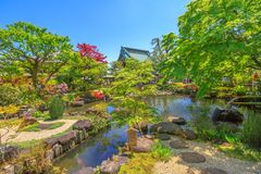 Hase-Dera garden Kamakura. Kamakura, Japan - April 23, 2017: small lake surrounded by a flowering garden in a sunny day with blue sky at Hase-dera Temple or Hase Stock Photography
