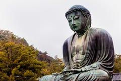 KAMAKURA, JAPAN, NOVEMBER 14, 2015: Kōtoku-in. Buddhist temple w. Ith a monumental bronze statue of Buddha royalty free stock photos