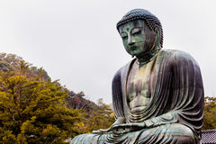 KAMAKURA, JAPAN, AM 14. NOVEMBER 2015: KÅ- toku-in Buddhistischer Tempel w Lizenzfreie Stockfotos