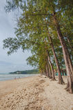 Kamala beach Stock Photography
