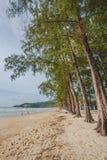 Kamala beach. Andaman sea tropical  Kamala beach in Phuket island, Thailand Stock Photography