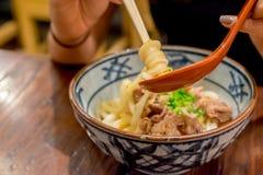 Kamatama-Udon Immagini Stock