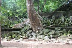 Kambodża Beng Mealea świątynia Siem Przeprowadza żniwa prowincję Siem Przeprowadza żniwa miasto fotografia royalty free
