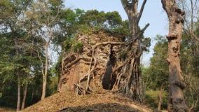 Kambodża Sambor Prei Kuk miasto Szefa ryza świątynia Kampong Thom miasto Kampong Thom prowincja Zdjęcia Royalty Free