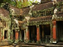 Kambodża zaniechana świątynia TA Prohm Obraz Royalty Free
