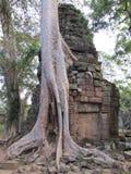 Kambodża Obrazy Royalty Free