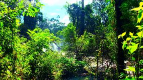 Kambodża Mondulkiri prowincja Zdjęcie Stock