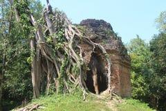 Kambodża Sambor Prei Kuk Kampong Thom prowincja Kampong Thom miasto Zdjęcie Royalty Free