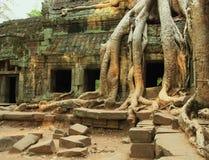 Kambodja Royalty-vrije Stock Fotografie