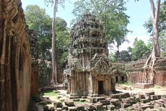 kambodja De tempel van Ta Prohm Siem oogst Provincie Siem oogst stad Stock Afbeeldingen