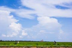 Kambodjansk folkrittcykel på kusten Arkivbilder