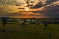 Kambodjanska risfält på solnedgångsurrskottet arkivfoton