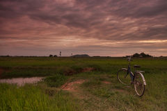 Kambodjanskt landskap för bygd Fotografering för Bildbyråer