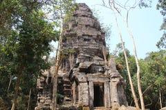 kambodscha Tempel Ta Krobay Provinz Oudor Meanchey Siem- Reapstadt Lizenzfreies Stockfoto