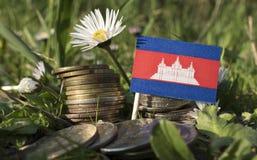 Kambodschanische Flagge mit Stapel Geld prägt mit Gras Lizenzfreie Stockbilder