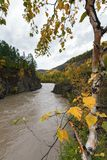 Picturesque autumn river flowing among roky mountain Royalty Free Stock Photography