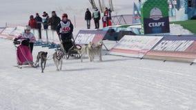 Kamchatka dzieciaków rywalizacji Psi sanie Ściga się Dyulin Beringia zbiory wideo