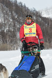 Kamchatka extreme Sled Dog Racing. Russia, Far East Royalty Free Stock Photo