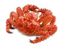 Kamchatka king crab isolated on white Royalty Free Stock Photography