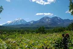 Kamchatka landscape Royalty Free Stock Photo