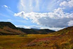 Kamchatka ofördärvad natur Arkivbilder