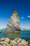 Kamchatka rock near island Stock Photography