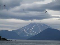 Kamchatka Ryssland Royaltyfri Fotografi