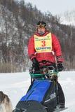 Kamchatka sania krańcowy Psi Ścigać się Rosja, Daleki Wschód Zdjęcie Royalty Free