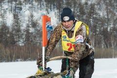 Kamchatka sania krańcowy Psi Ścigać się Rosyjski Daleki Wschód, Kamchatka Obraz Stock